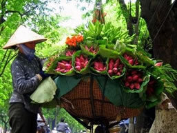 Vietnam Private Tour