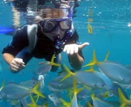 Palau snorkeling tour - Boundless Journeys