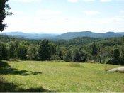 Hillsboro Land For Sale