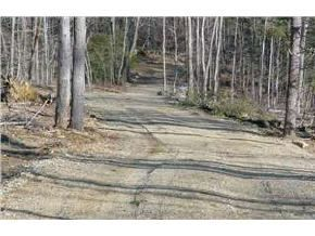 Pittsfield Homes/Land For Sale