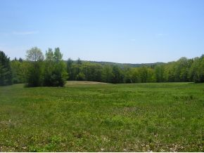 Sanbornton Homes/Land For Sale