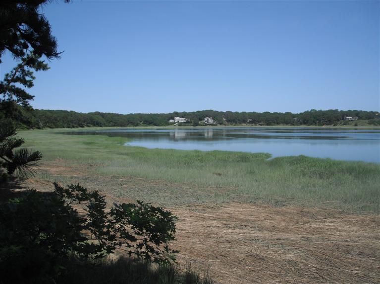 Wellfleet MA Waterfront Properties