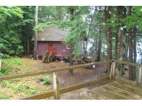 Squam Lake Cottages for Sale