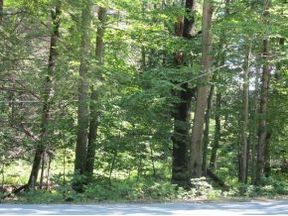 Lovell Lake Land with 10+ acres