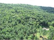 Greater Woodstock VT Area Land 25-100 Acres
