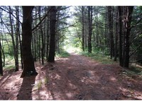 Merrymeeting Lake Land with 10+ acres