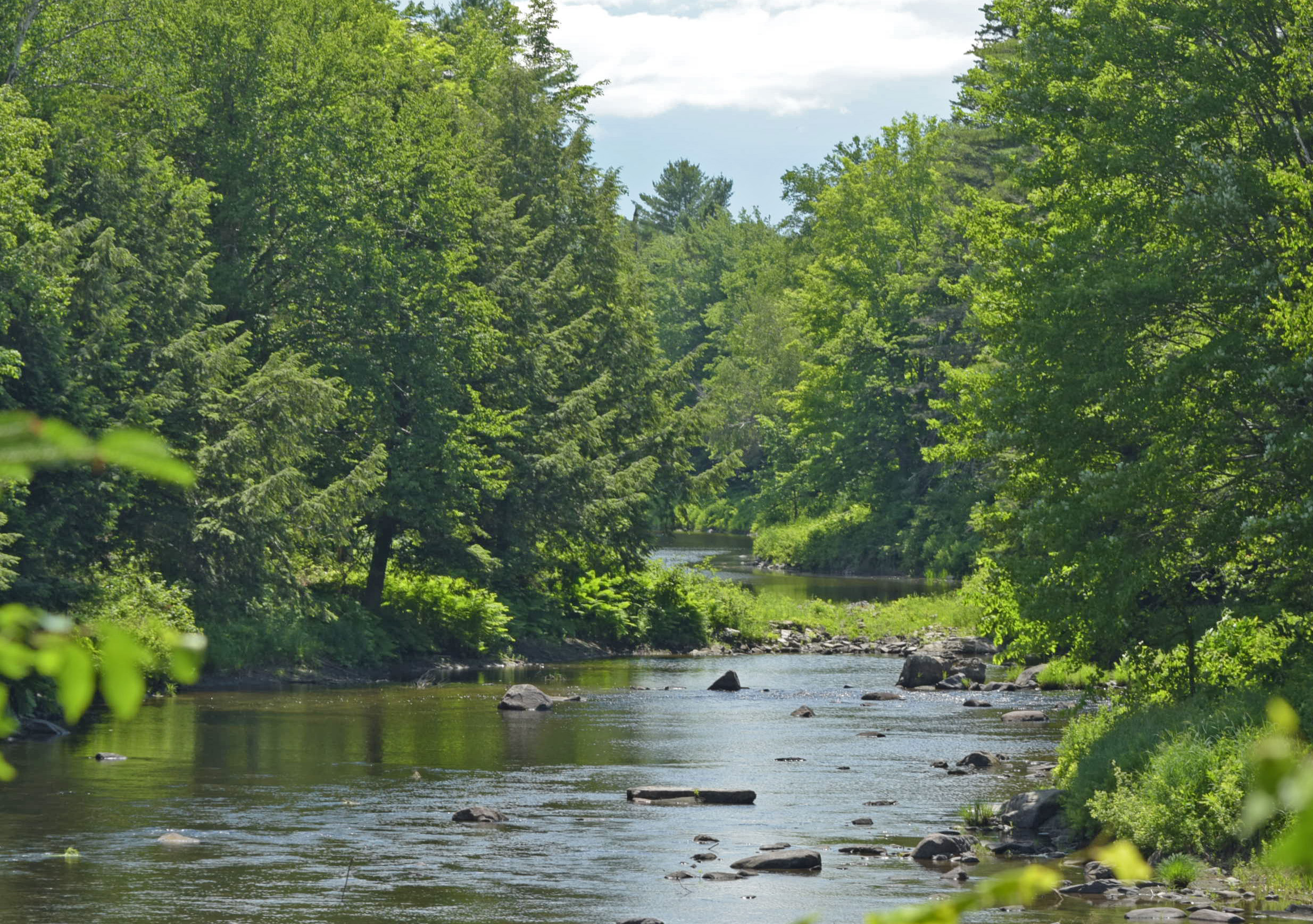 River and Live Water Properties